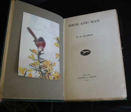 Image for Birds and Man.