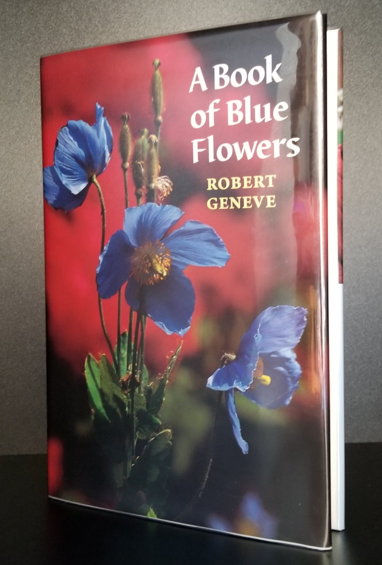 Image for A Book of Blue Flowers.